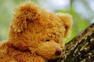 LOIS LOIS'S TEDDY