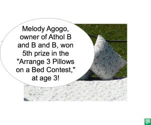 MELODY AGOGO PILLOWS