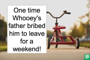MR. WHOOEY TRICYCLE WEEKEND