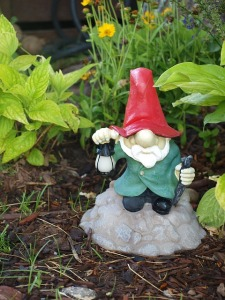 MR. WHOOEY'S GNOME