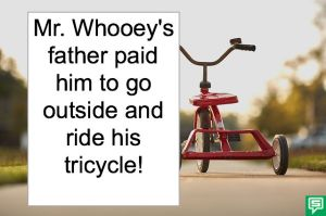 MR. WHOOEY'S TRICYCLE