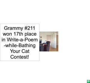 GRAMMY #211 POEM
