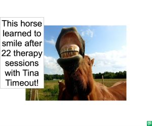 HORSE SMILED AFTER THERAPY SESSIONS