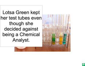 LOTSA GREEN ANALYST