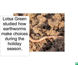 lotsa green earthworm choices