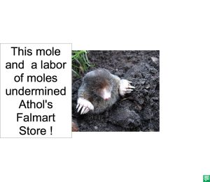 MOLE UNDERMINED
