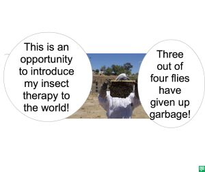 MR. SMITH-JONES INSECT THERAPY