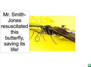 MR. SMITH-JONES RESUSCITATED