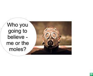MR. WHOOEY BELIEVE