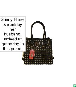 SHIMY HIME'S PURSE 2