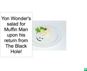 YON WONDER'S SALAD FOR MUFFIN MAN