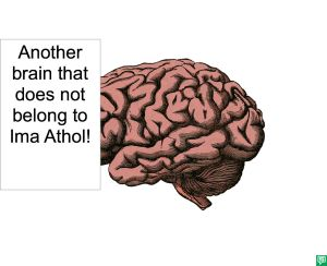 ANOTHER BRAIN THAT DOES NOT BELONG TO IMA ATHOL