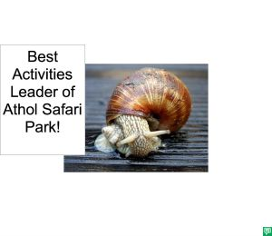 BEST ACTIVITIES LEADER OF ATHOL SAFARI PARK CORRECTION
