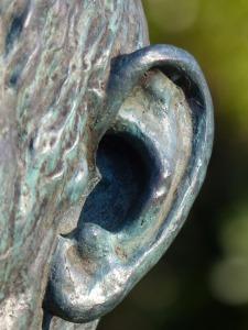 EAR 6