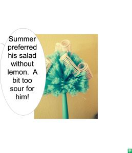 ELSIE WHAT-WHEN SUMMER THOUGHT LEMON TOO SOUR