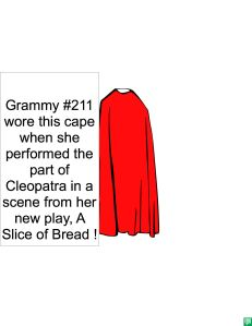 GRAMMY #211'S CAPE