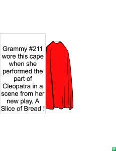 GRAMMY #211'S CAPE