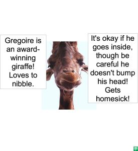 GREGOIRE GIRAFFE