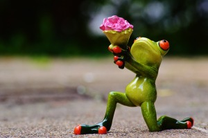 MR. WHOOEY COLLECTS FROG FIGURES