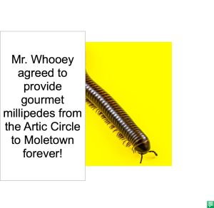 MR. WHOOEY WILL PROVIDE MILLIPEDES