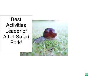 SUMMER THE SNAIL BEST ACTIVITIES LEADER