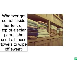 WINFRED WHEEZER USED TOWELS