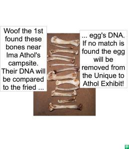 BONES DNA