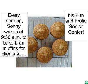 BRAN MUFFINS SONNY BAKES
