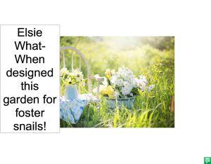 ELSIE WHAT-WHEN'S GARDEN FOR SNAILS