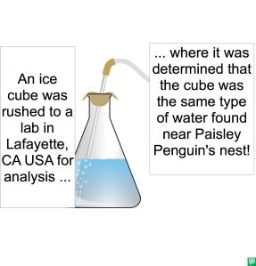 ICE CUBE RUSHED FOR ANALYSIS