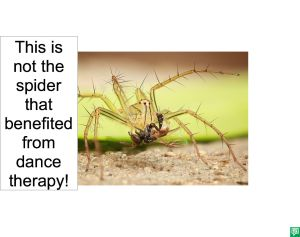 SPIDER DID NOT USE DANCE THERAPY