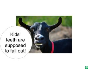 BLACK GOAT KIDS' TEETH