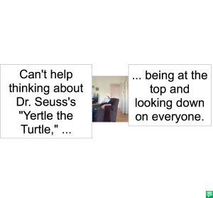 GRAMMY #211 DR. SEUSS