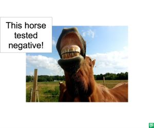 HORSE TESTED NEGATIVE