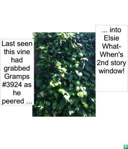 MYSTERY VINE GRABBED GRAMPS #3924