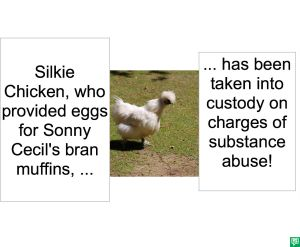 SILKIE CHICKEN SUBSTANCE ABUSE