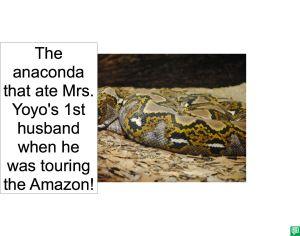 ANACONDA 1ST HUSBAND