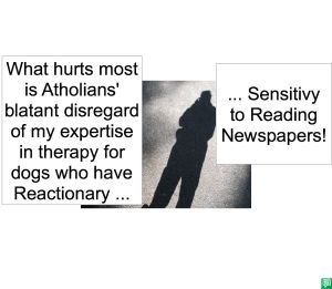 DR. LONG DOG'S SENSITIVITY