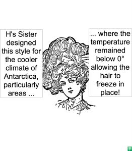 H'S SISTER'S HAIRDO ANTARCTICA