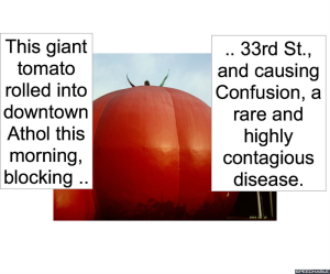 GIANT TOMATO CAUSES CONFUSION