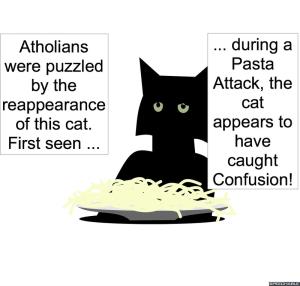 PASTA CAT CONFUSED