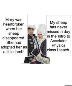 MS. NODOFF'S PARENTS SHEEP