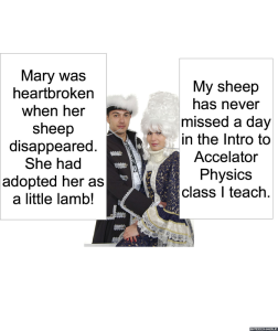 MS. NODOFF'S PARENTS SHEEP
