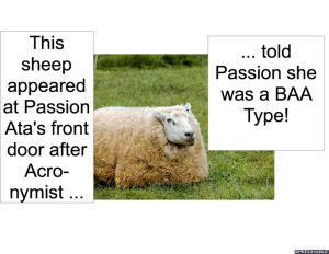 SHEEP APPEARED AT PASSION ATA'S DOOR