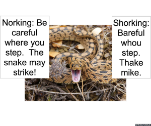 STRIKING SNAKE SNORKING