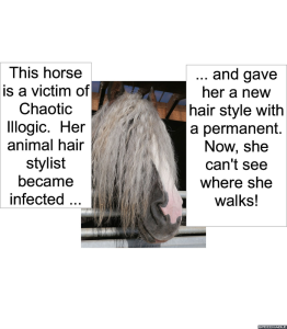 HORSE A VICTIM OF HAIR STYLIST