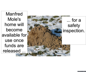 manfred-moles-home-inspection