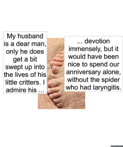mrs-jones-smith-dear-husband