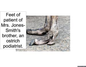 ostrich-feet-podiatrist