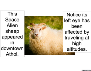space-alien-sheep-downtown-athol